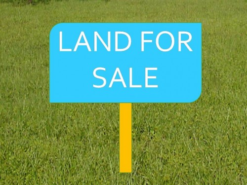 A Plot of Land With C of O in Magodo GRA Phase 1
